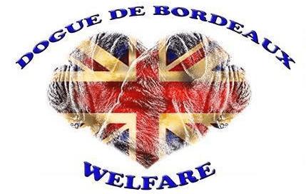DDB Welfare
